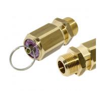 """R 4252085102 Клапан предохранительный с кольцом 1/4"""" 8,5 Bar"""